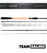 Удилище пикерное Team Salmo ENERGY Picker 40 3.00